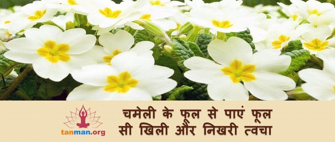 चमेली के फूल से मिलेगी निखरी और दमकती त्वचा, पढ़ें कैसे?