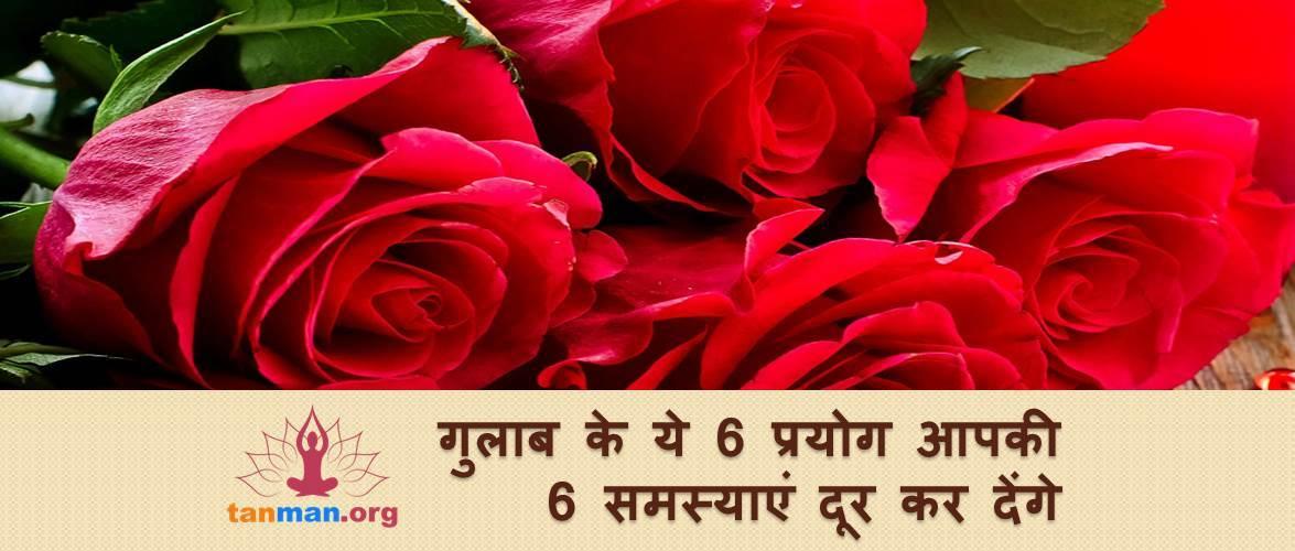 गुलाब के ये 6 औषधीय उपयोग आपकी 6 समस्याएं दूर कर देंगे