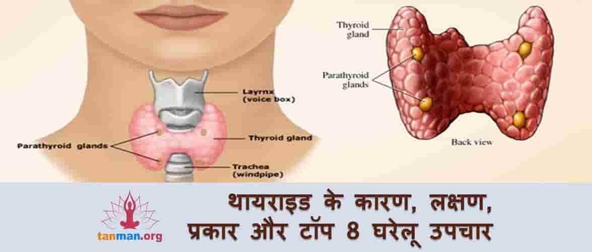 थायराइड के कारण, लक्षण, प्रकार और टॉप 8 घरेलू उपचार