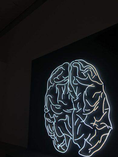 neon lights of a brain