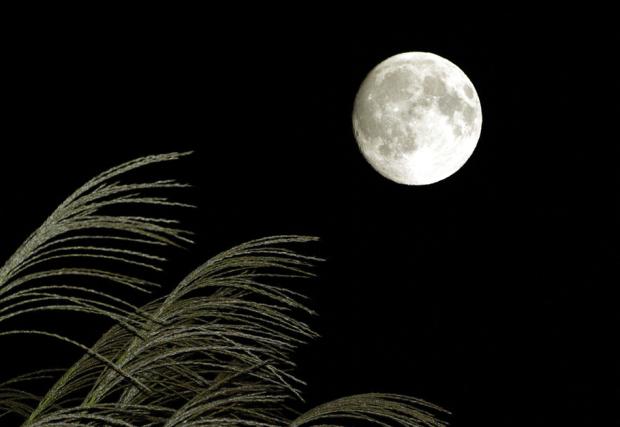 十五夜2016年は満月じゃない。ちなみに天気はどうでしょう。