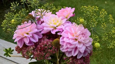 bukett med blomster fra høsthagen