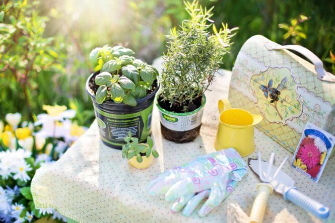 tuin zomerklaar maken