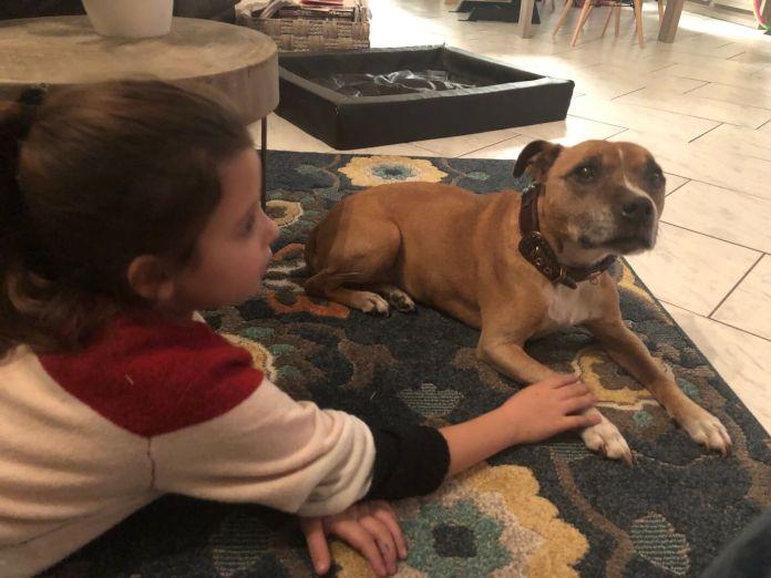 Snot en verdriet deze week knuffelen met de hond