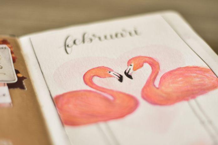 bullet journal in februari flamingo's