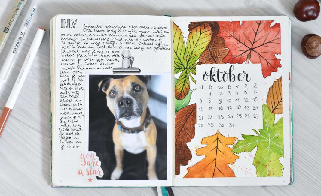 bullet journal in oktober