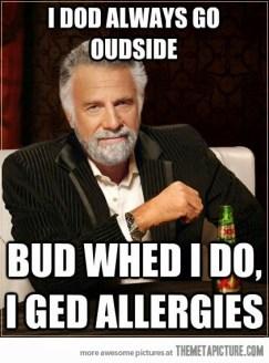 funny-most-interesting-man-meme-allergies