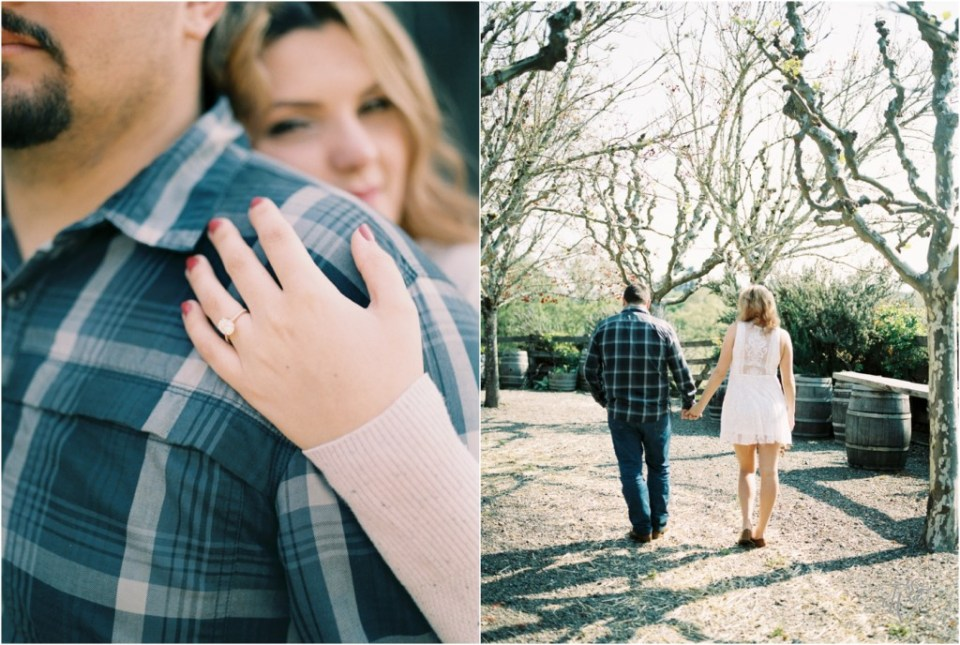 Iron Horse Vineyards Sebastopol Winery Wedding Photographer Isobel & Elliot Engaged24