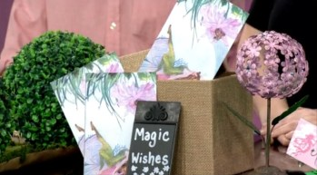 MAGIC FOREST WISHES MASS APPEAL