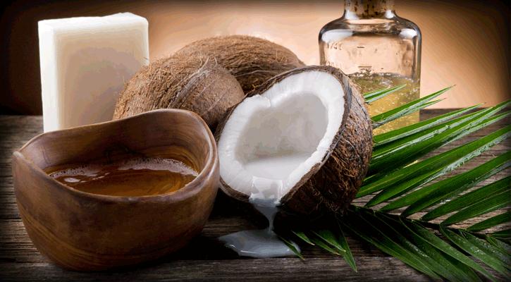 5 Manfaat Minyak Kelapa Murni untuk Hewan Peliharaan Anda