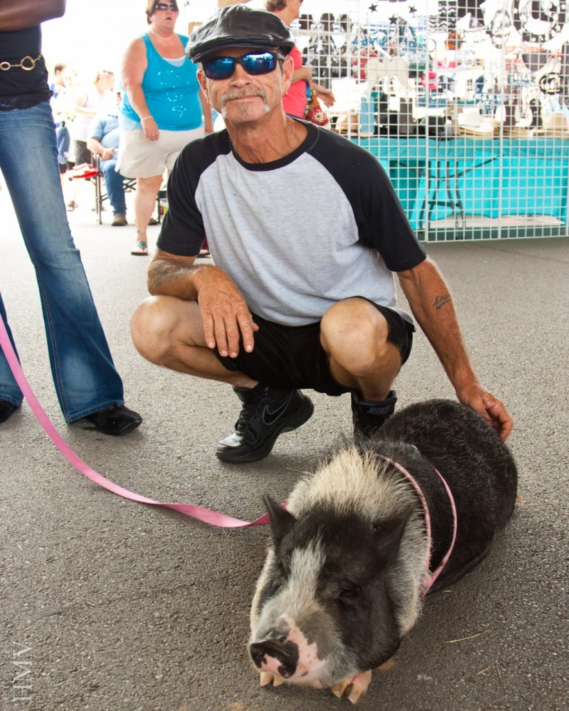A pet pig named CAT