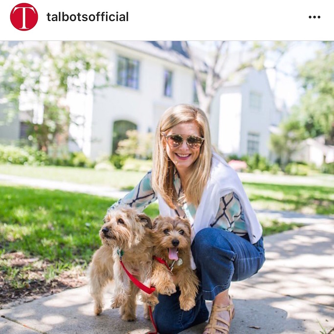 Sparky and Max Foster, Talbots, dog days of summer, norfolk terriers, Tanya Foster, Dallas blogger