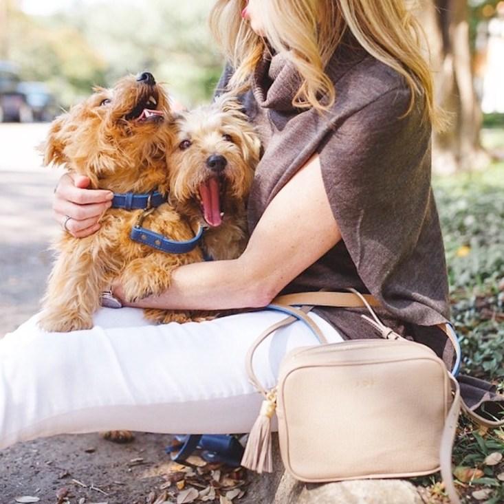 GiGI New York crossbody bag, Graphic Image dog collars and leashes, norfolk terriers, dog walk