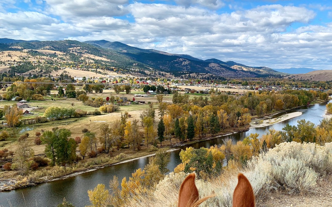 Fall in love with Missoula, Montana!
