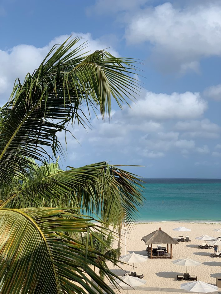 Check out Bucuti & Tara Beach Resort and everything the island of ARUBA has to offer