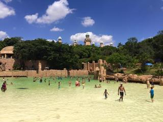 A magnificent Christmas trip to Sun City, South Africa