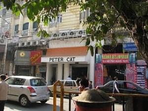 Peter Cat - Pic by Tanya Munshi