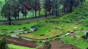 Ooty in all its lush green beauty. Photo credit: Aditya Narayanan