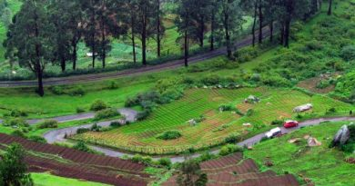 Ooty in all its lush green beauty. Photo credit: Aditya Narayanan