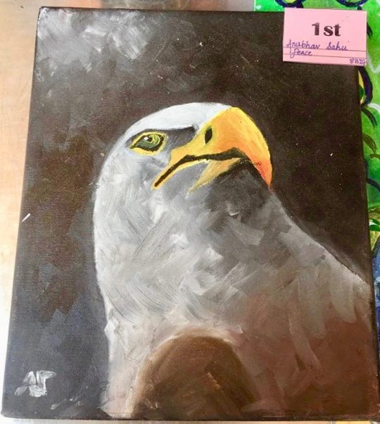Anubhav's masterpiece: Grade 8 Art Attack Competition