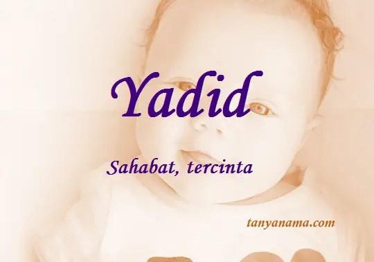 arti nama yadid