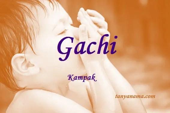 arti nama Gachi