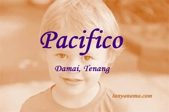 arti nama Pacifico