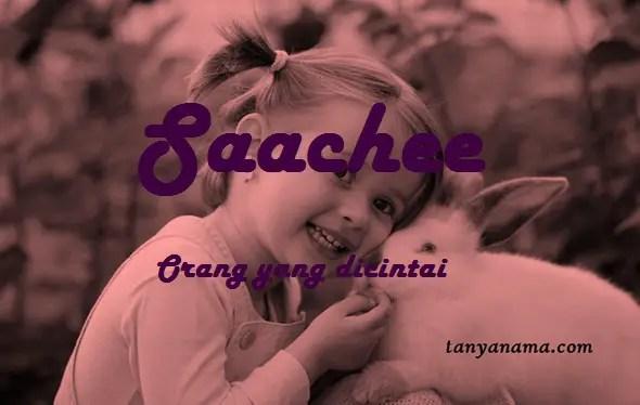 arti nama Saachee