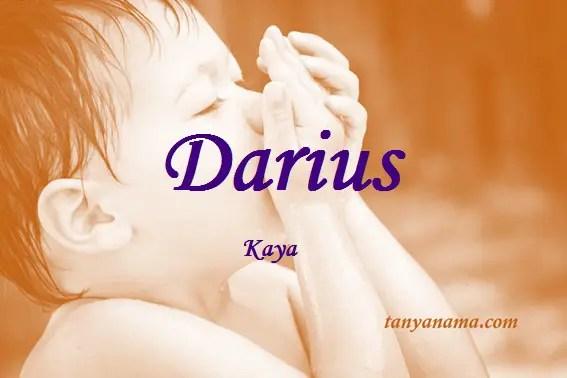 arti nama Darius