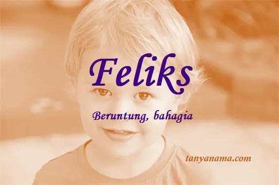 arti nama Feliks