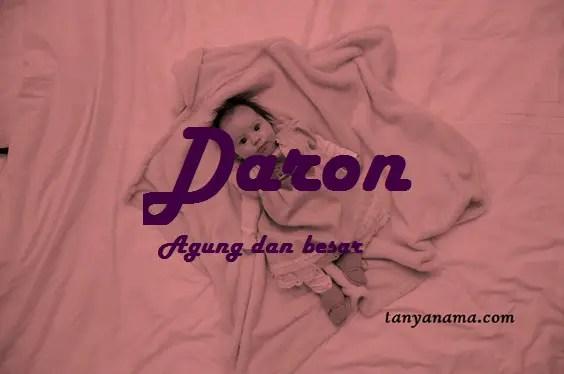 arti nama Daron