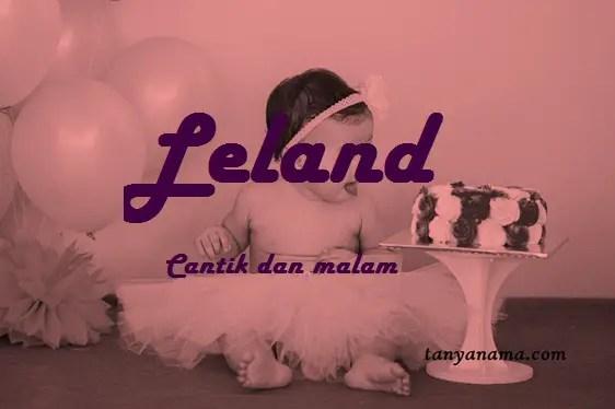 arti nama Leland