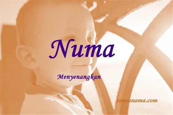 arti nama Numa