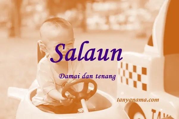 arti nama Salaun