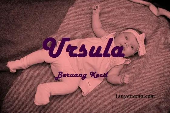 arti nama Ursula
