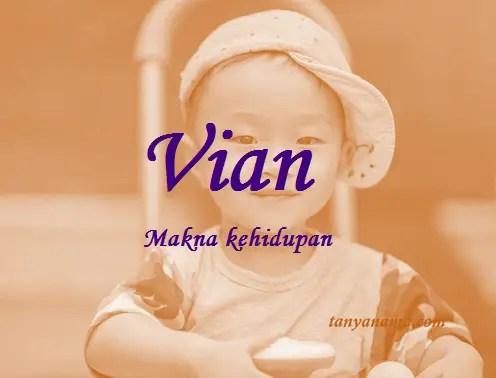 arti nama Vian