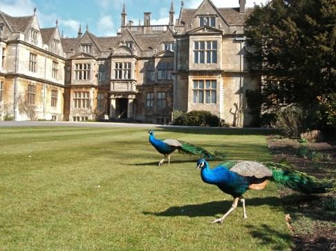 Corsham Court, Corsham, Wiltshire