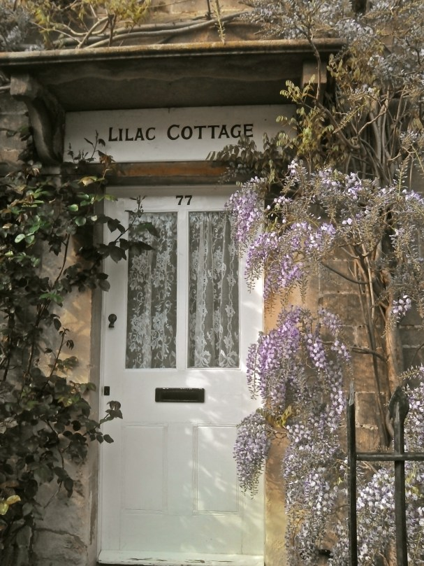 Picturesque local limestone cottage, covered in wisteria. Someone with a sense of humour.