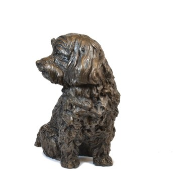 Maltese Terrier left view