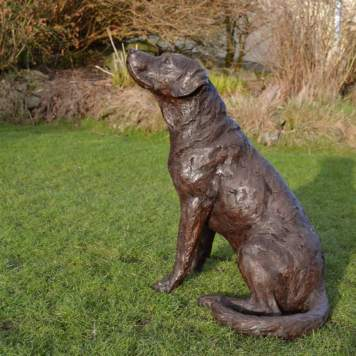 Labrador looking up 3 - Tanya Russell Sculpture