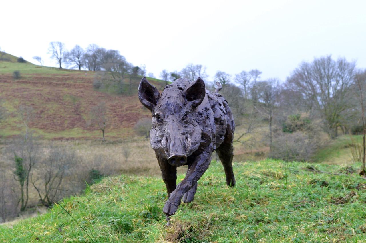 Wild Boar 3- Tanya Russell