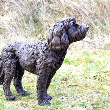 Cockerpoo dog sculpture by Tanya Russell