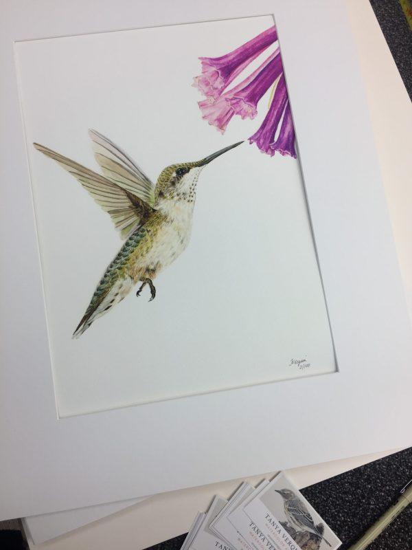 hummingbird print with mat