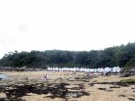 14 Noirmoutier 001 (6)
