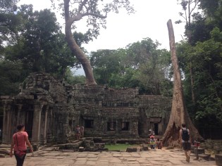 Angkor Jungle