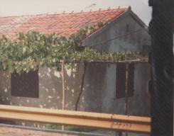 Yugoslavia (12)