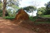 10b Entebbe Gardens (56)