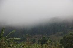 07b Sipi Falls (107)