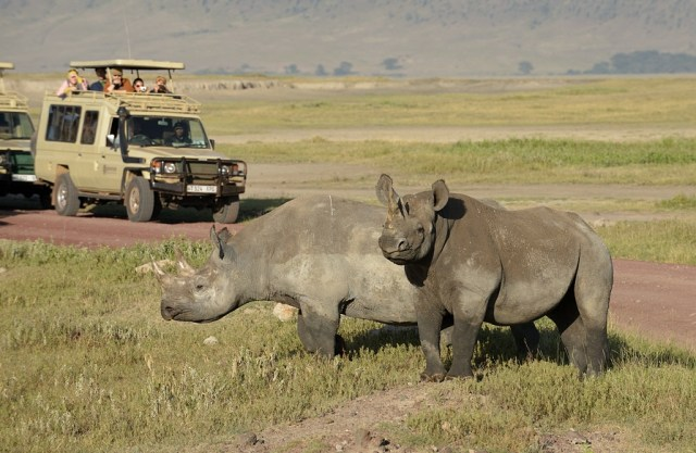 8 Days Safari to Serengeti,Tarangire and Ngorogoro Crater