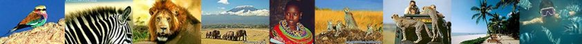 Voyage Tanzanie, présentation, guide, climat, trucs et astuces, divers